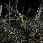 Nachtlandschaft_Verdun_104k_Village_Douaumont