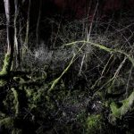 Nachtlandschaft_Verdun_99k_Village_Douaumont