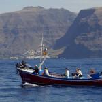 Whale Watching Boot I, LaMar Reisevermittlung